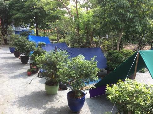 Làm cổng tiểu trại, dựng lều.